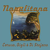 Play & Download Napulitana No.9 by Various Artists | Napster