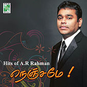 Hits of A.R.Rahman Nenjame by Various Artists