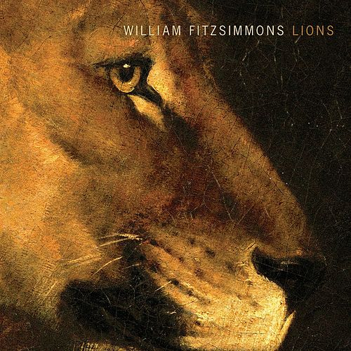 Play & Download Lions by William Fitzsimmons | Napster