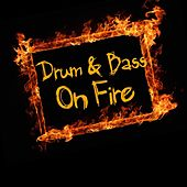 Drum & Bass On Fire by Various Artists