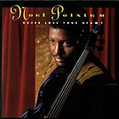 Play & Download Never Lose Your Heart by Noel Pointer | Napster