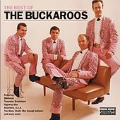Play & Download The Best Of The Buckaroos by The Buckaroos | Napster