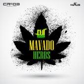 Herbs - Single by Mavado