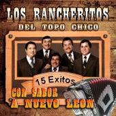 Play & Download Con Sabor a Nuevo Leon by Los Rancheritos Del Topo Chico | Napster