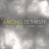 Play & Download What Love Looks Like by Among the Thirsty | Napster