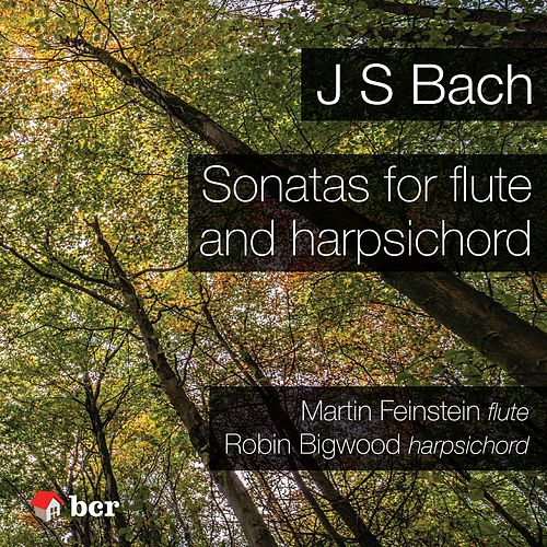 Sonatas for Flute and Harpsichord by Martin Feinstein