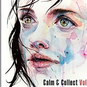 Calm & Collect Vol. 1 - EP by Anitek