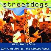 Play & Download All We Need Is Music - Til the Morning Comes (feat. Arthur Thompson) by Street Dogs | Napster