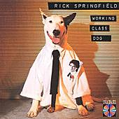 Working Class Dog by Rick Springfield
