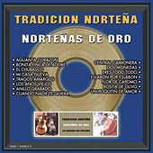 Nortenas De Oro by Tradicion Nortena