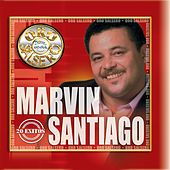 Oro Salsero: 20 Exitos by Marvin Santiago