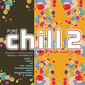 Play & Download Pure Chill 2 by Various Artists | Napster