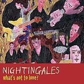 Play & Download What's Not To Love? by The Nightingales | Napster