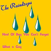Play & Download Kind of Boy You Can't Forget by The Raindrops | Napster