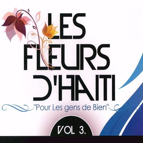 Play & Download Les fleurs d'Haïti, vol. 3 (Pour les gens de bien) by Various Artists | Napster