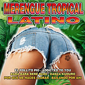 Play & Download Merengue Tropical Latino by Various Artists | Napster