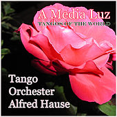 Play & Download A Media Luz - Tangos of the World by Tango Orchester Alfred Hause | Napster