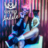 Play & Download Andale by Matteo | Napster