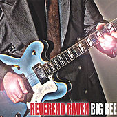 Play & Download Big Bee by Reverend Raven | Napster