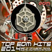 Top 30 EDM Hits 2014 - Best of Top Dubstep, Trance, Electro, Downtempo & Psy Trance by Various Artists