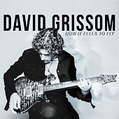 Play & Download How It Feels to Fly by David Grissom | Napster