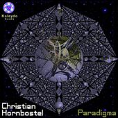 Play & Download Paradigma by Christian Hornbostel | Napster