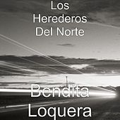 Bendita Loquera by Los Herederos Del Norte