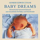 Play & Download Baby Dreams: Instrumental Lullabies by Gomer Edwin Evans | Napster