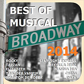 Best of Musical 2014 by Various Artists
