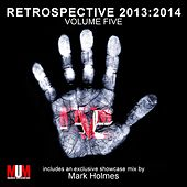 Retrospective 2013:2014, Vol. 5 by Various Artists