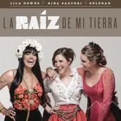 La Raíz de Mi Tierra by Soledad