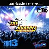 Play & Download Los Huaches En Vivo 2013 by Los Huaches De Tierra Caliente | Napster
