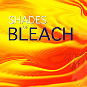Play & Download Shades of Bleach by Spirit | Napster