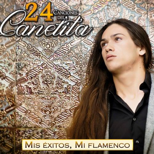 Mis Éxitos, Mi Flamenco. 24 Canciones del Canelita by Canelita
