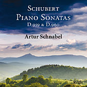 Schanbel plays Schubert by Artur Schnabel