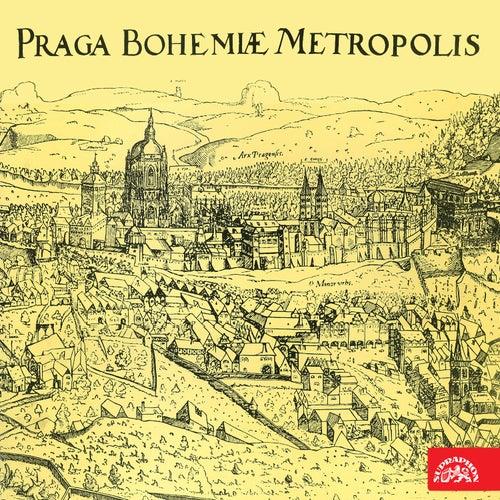 Au Revoir, Prague by Zuzana Růžičková