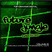 Play & Download Future Jungle Selections Volume 1 - EP by Various Artists | Napster
