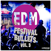 Play & Download EDM Festival Bullets, Vol. 3 by Various Artists | Napster