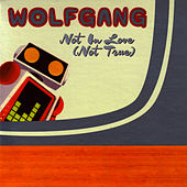 Play & Download Not In Love (Not True) by Wolfgang | Napster