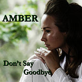 Play & Download Don't Say Goodbye by Amber | Napster