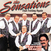 That Feeling Again by The Sensations