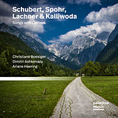 Play & Download Schubert, Spohr, Lachner, & Kalliwoda: Lieder by Christiane Boesiger | Napster