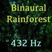 Play & Download Binaural Rainforest by 432 Hz | Napster