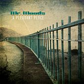 Play & Download A Pleasant Place - EP by Mr. Moods | Napster