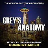Grey's Anatomy (Theme from the TV Series) by Dominik Hauser