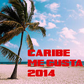 Play & Download Caribe Me Gusta 2014 by Various Artists | Napster