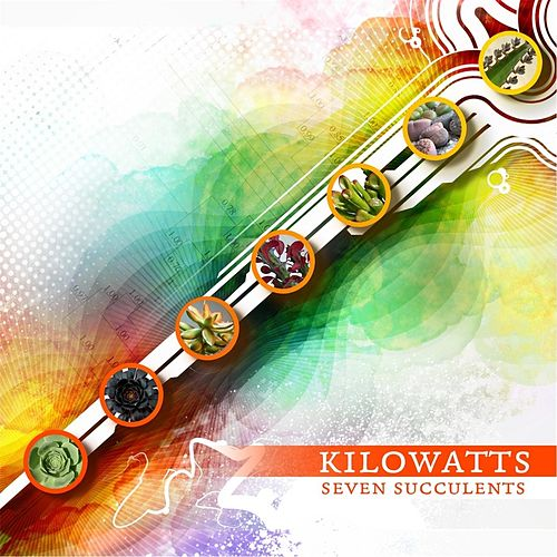 Play & Download Seven Succulents by KiloWatts | Napster