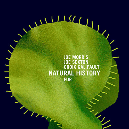 Play & Download Fur by The Natural History | Napster