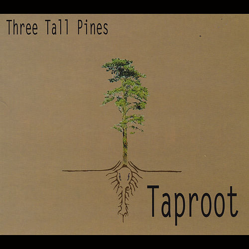 Play & Download Taproot by Three Tall Pines | Napster