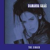 The Singer by Diamanda Galas